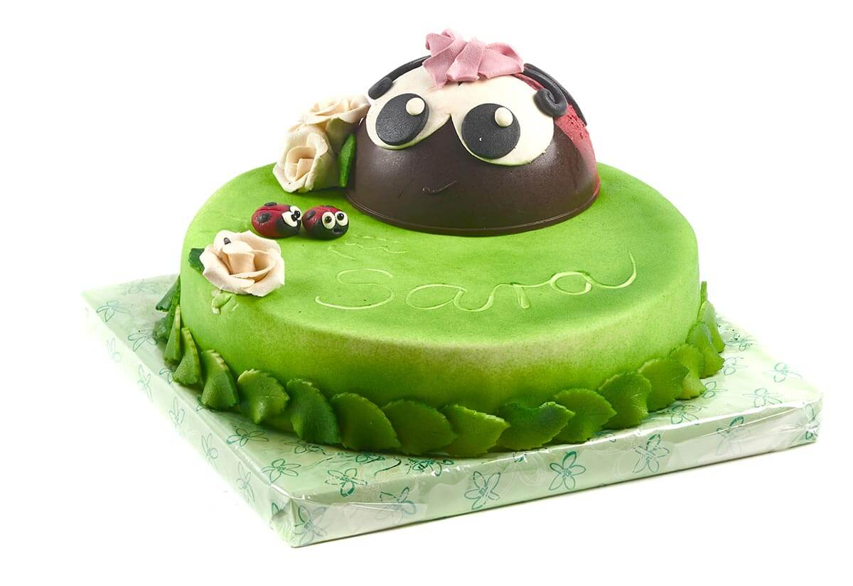 Geburtstagstorte Käfer